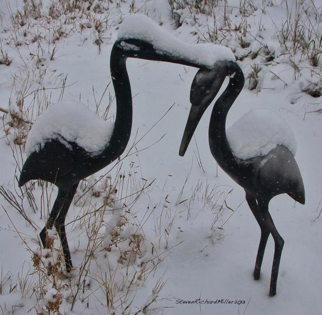 CranesTD7