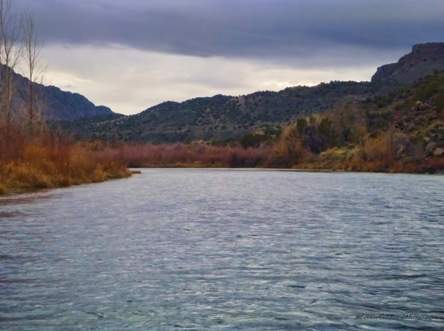The Rio Grande river, at the Rio Bravo Campground, Orilla Verde  Recreation Area, NM