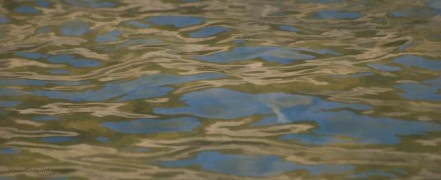 Reflections, Rio Grande