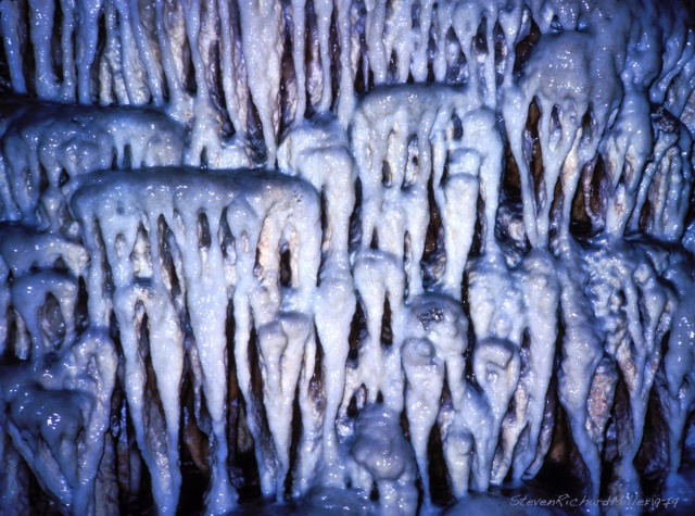 "Carlsbad""Teeth""#17TSim.02"
