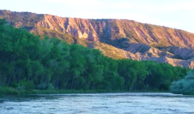 On the Bosque section of the Rio Grande river, in Rinconada, New Mexico (near Taos)