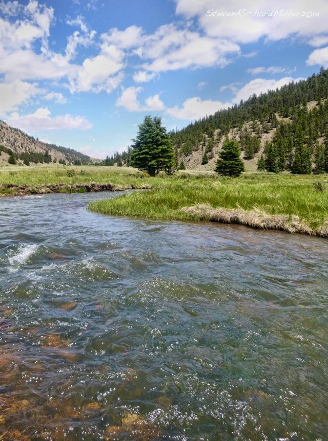 The Rio Costilla is a very pretty creek