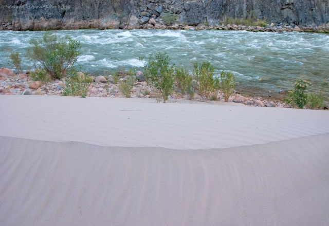 Boucher Rapid, Mile 97.1, and sand dune. This dune appears to be the product of an intentional flood release