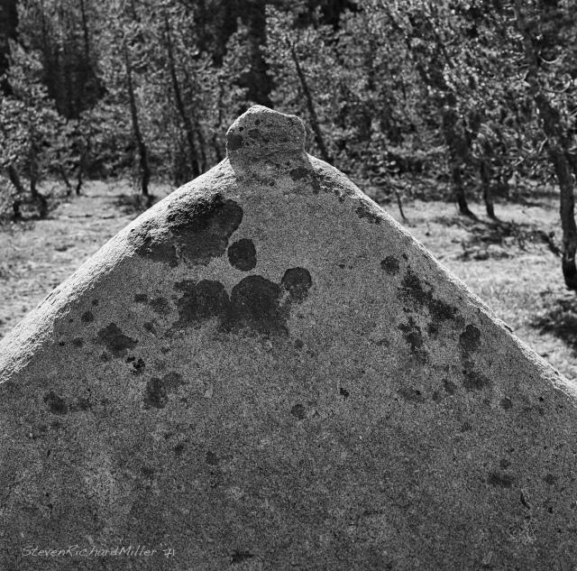Interestingly eroded boulder