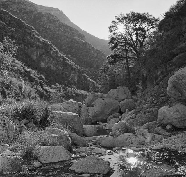 N. McKittrick Canyon