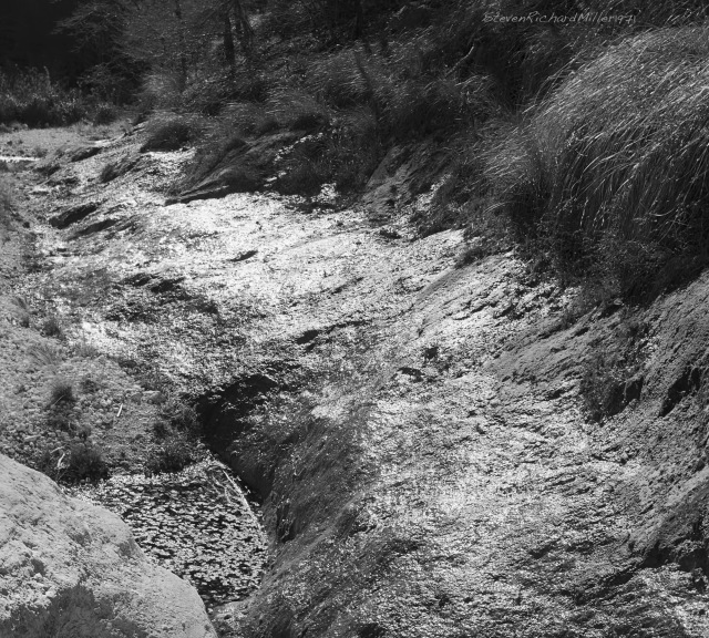 N. McKittrick Canyon, seep