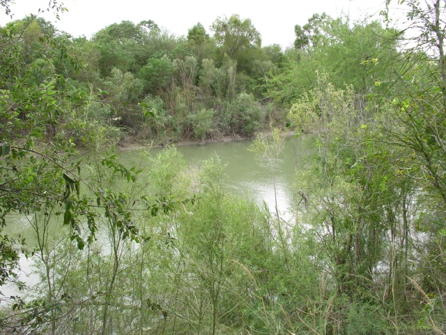 Rio Grande, Santa Ana NWR, TX