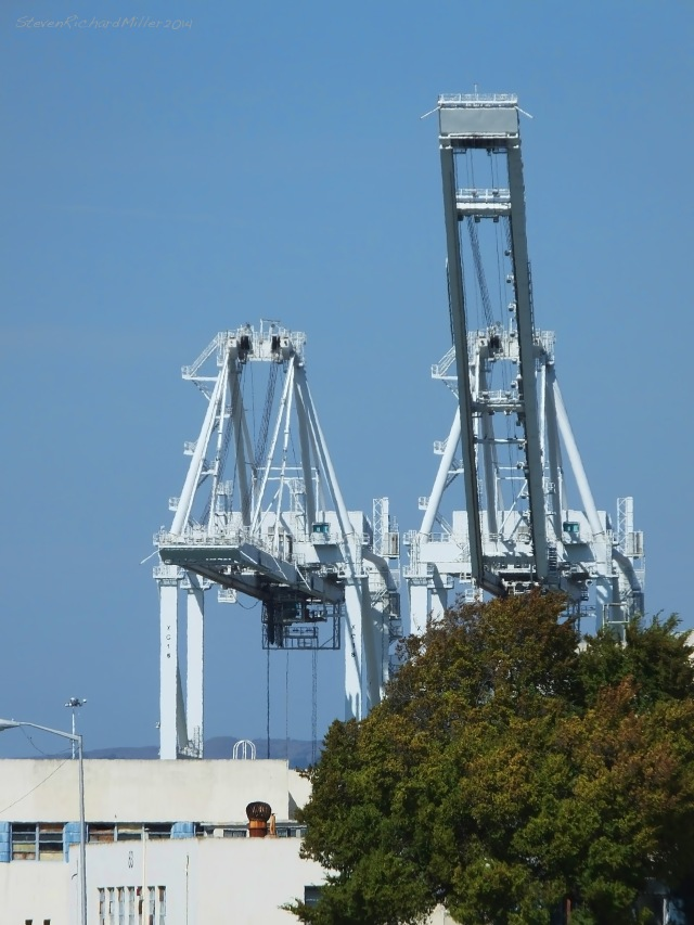 Port of Oakland cranes, from the former Alameda Naval Air Station