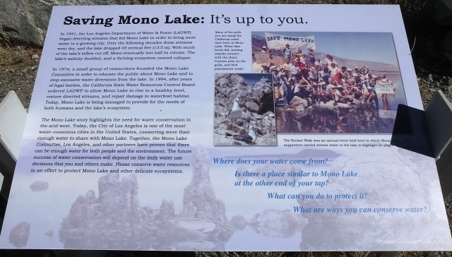 The story of saving Mono Lake