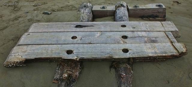 Flotsam at Muir Beach