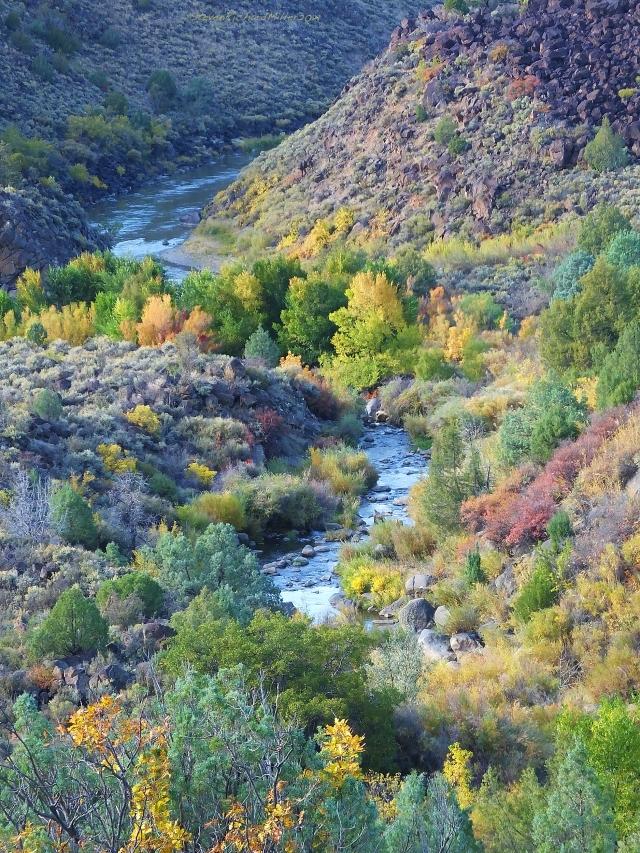 Rio Grande (above) and Rio Pueblo de Taos (below)