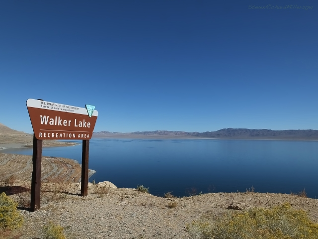 Walker Lake, view to the north