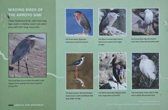 Birds sign