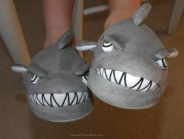 Benet's new slippers