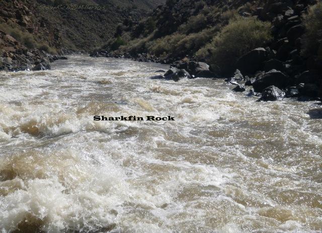 Sharkfin Rock, in Rock Garden Rapid