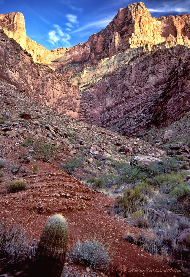 The Grand Canyon Supergroup is present in the upper valley. A barrel cactus is seen in the reddish Hakatai Shale, and the purplish cliff is the Shinumo Quartzite.