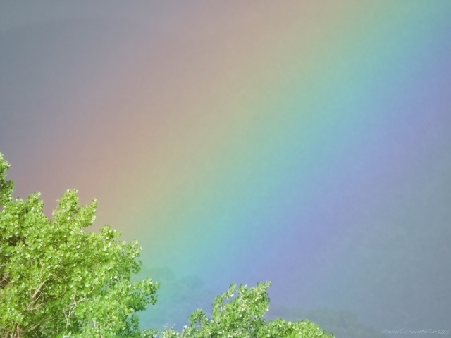 Rainbow and cottonwoods, view to the east from our place alongside the Rio Grande
