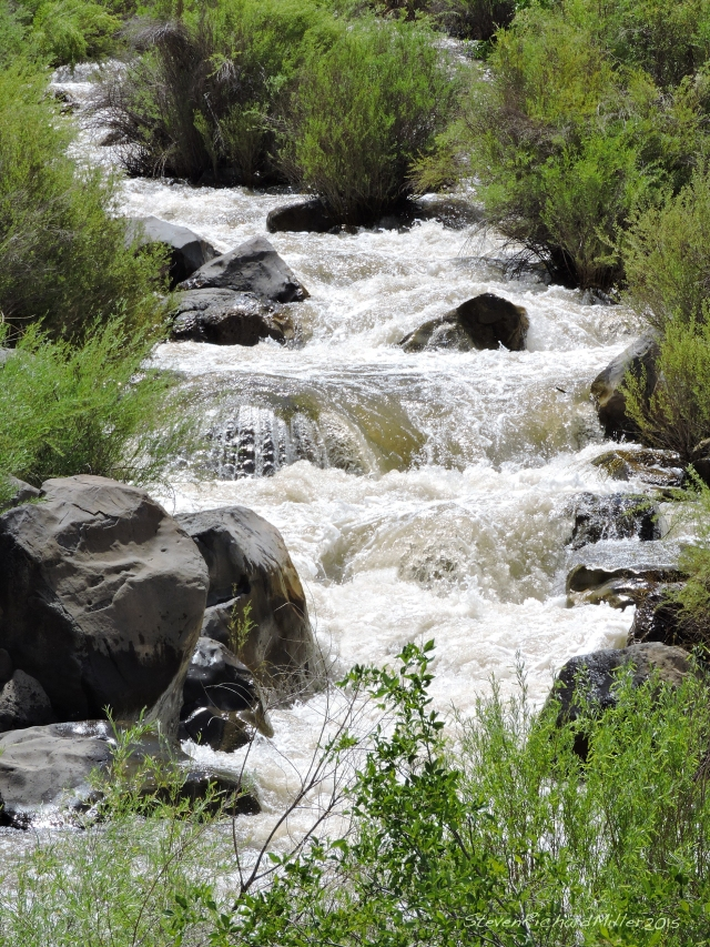Taos Creek is running high