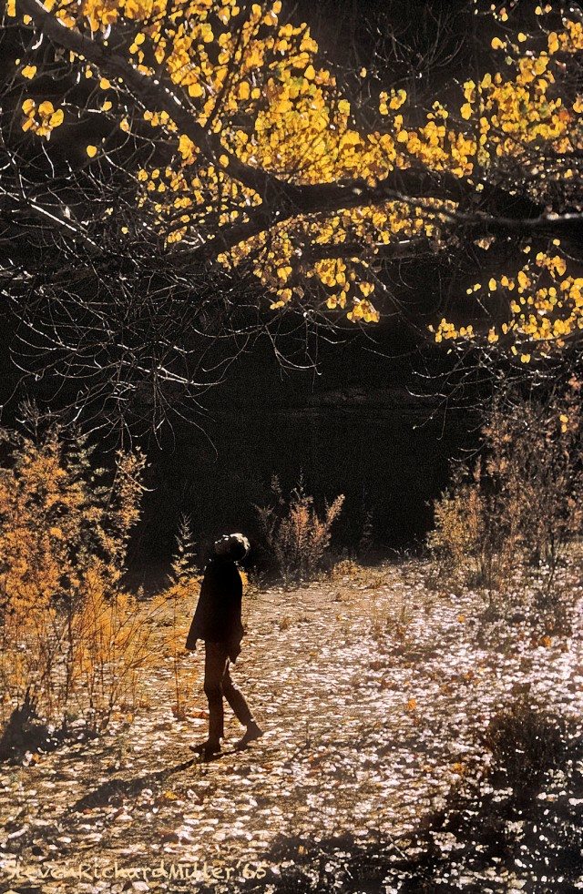 Coyote Gulch, Fall, 1965