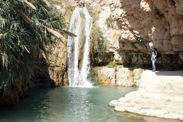 Ein Gedi canyon and stream,. now a National Park