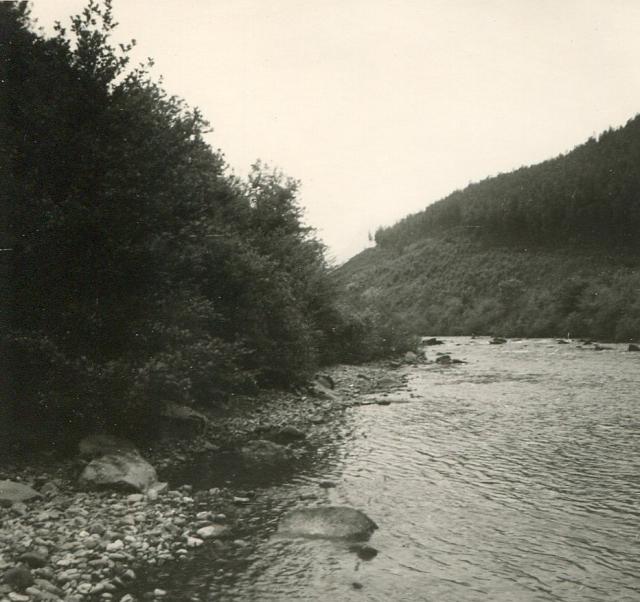 The Rio Ason