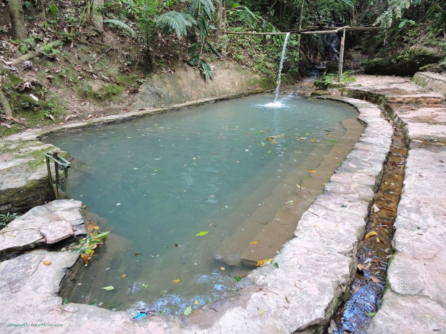 Jungle stream and pool, Puma Rinri Amazon Lodge