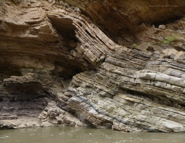 Folded strata (limestone or quartzite?) at the exit to the Narrows