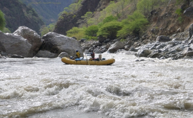 With Wasson's in our collective rear-view mirror, we delighted in the playful rapids that followed, one after another.