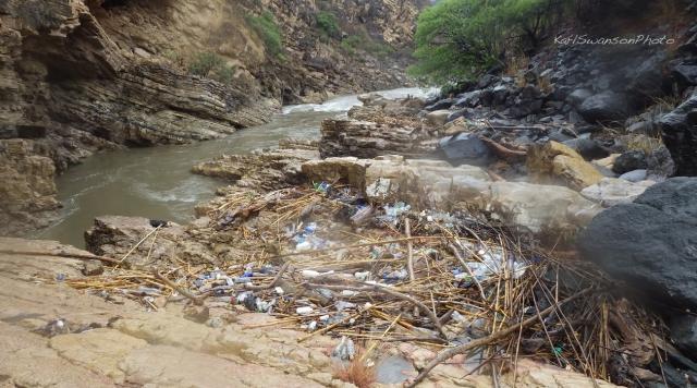 Highwater trash (Karl Swanson photo)