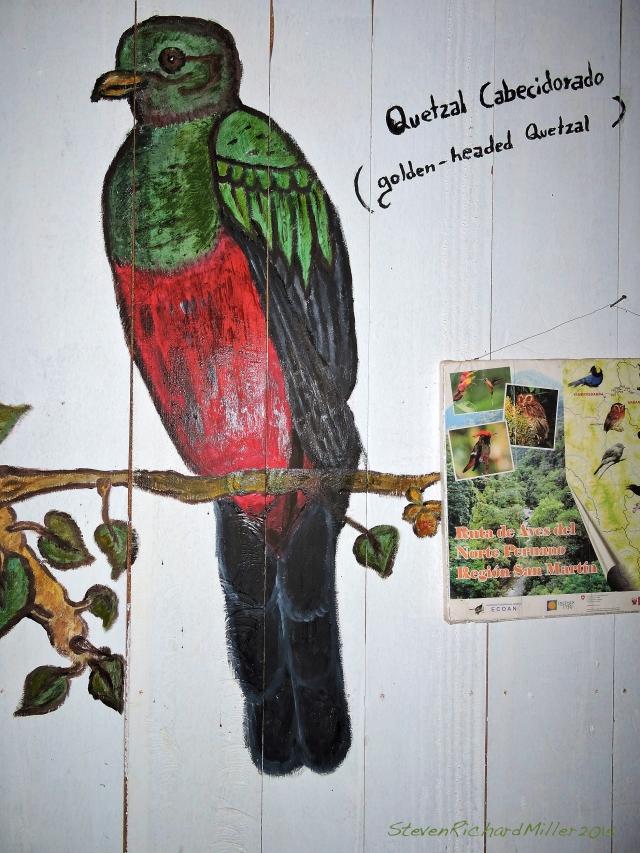 27. QuetzalPaintingInRestaurantOct312015_8165