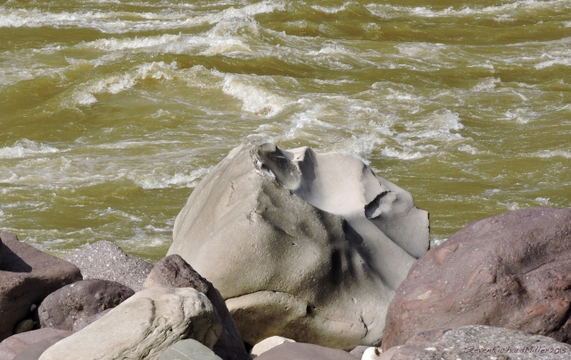 Waves in the river make waves in the rock