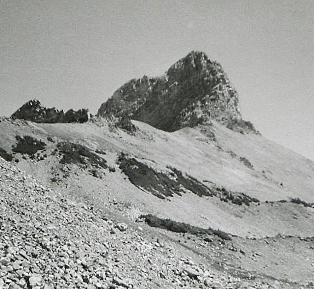 Buck Mountain