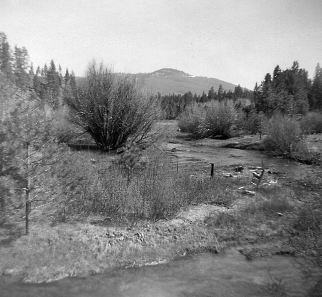 Lower Hat Creek, at Big Springs. Good fishing!
