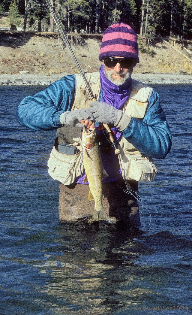 Yellowstone cutthroat, cauught in Yellowstone Lake, 1994