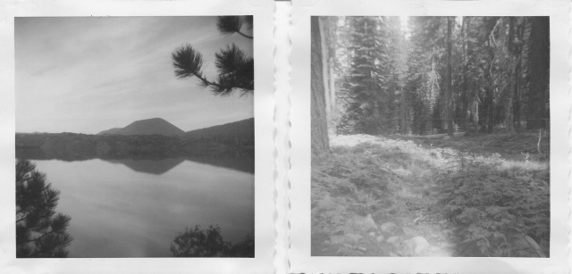 Butte Lake, cinder cone and glade, along the trail to Widow Lake