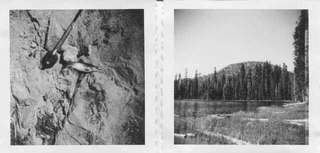 30. Kings Creek brook trout and Summit Lake 1