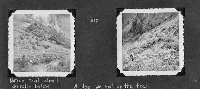 Glacier#12Swiftcurrent