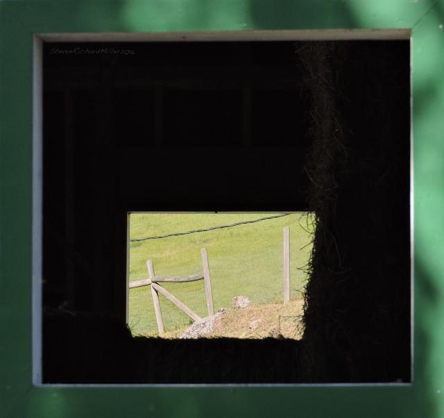 WindowApr292016_1047