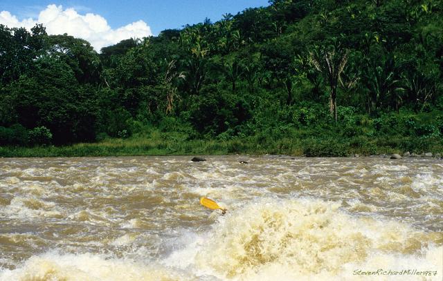 Chachalaca, kayak
