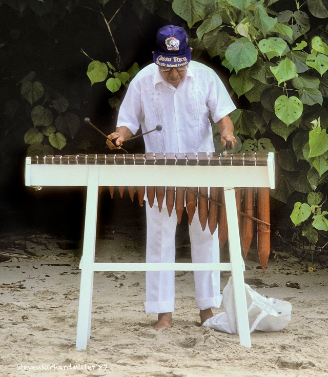Playing the marimba