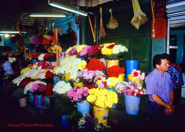 MercadoFlowers#32'90Sim.17