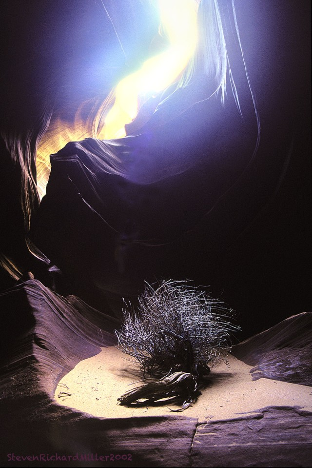 U.Antelope#8'02Tumbleweed