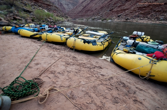 Our boats are tied-up to a sand stake, covered by a pot. They are: five 16' NRS rafts (yellow) and one 18' blue NRS raft (blue). Jesse and I are rowing the latter, which handled well.