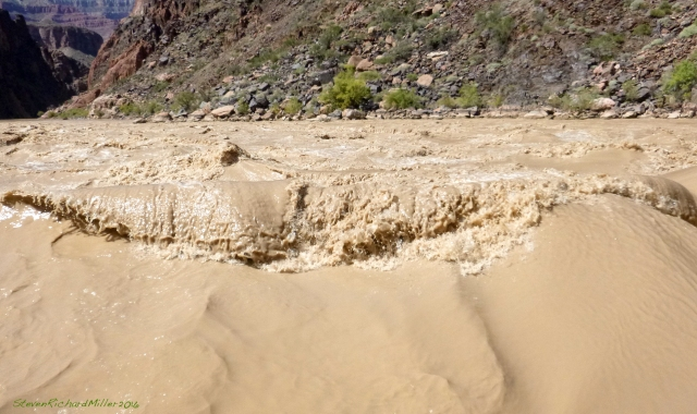 The wave in Salt Creek Rapid, Mile 93
