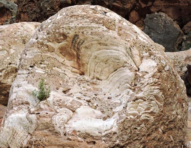 Travertine boulder, Elves Chasm