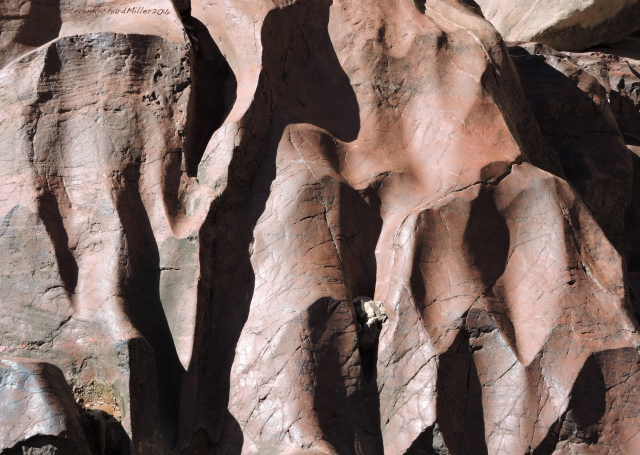 Sculpted Shinumo Quartzite, on the left at Mile 137