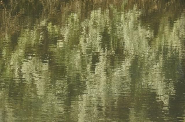 ReflectionsDSCN2773