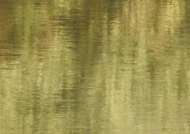 ReflectionDSCN3155