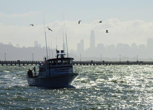 FishingBoatBerkeleyDSCN3741