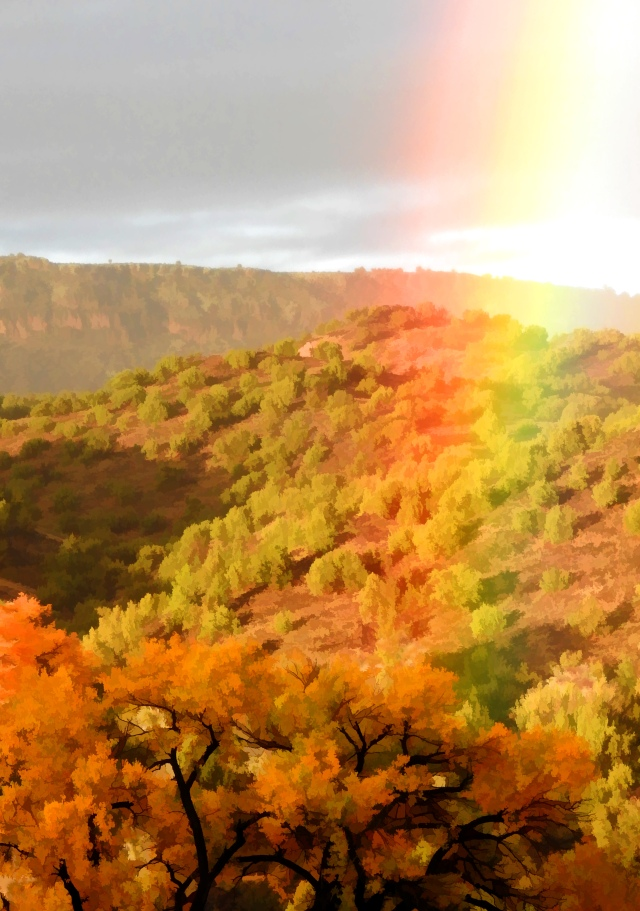 RainbowBZDSCN3936